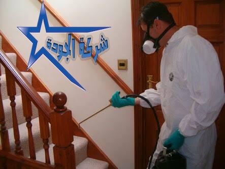 رش مبيدات ومكافحة حشرات المنزل بالضمان