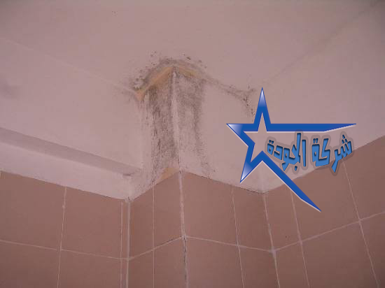 شركة ترميم منازل بالرياض 0559890926